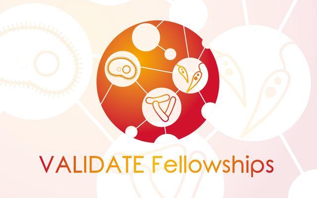 validate fellowships