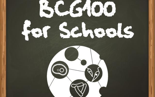 bcg100 for schools square