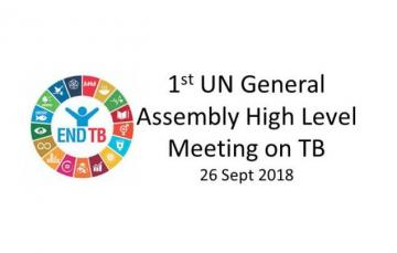 1st UN General Assembly High Level Meeting on tuberculosis